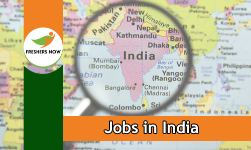 Jobs in India For Freshers