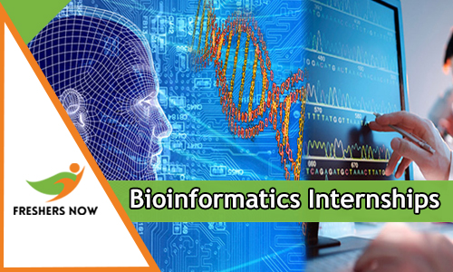 Bioinformatics Internships