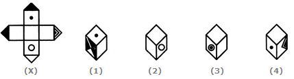 Cubes And Dices Q.3 Image 2