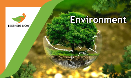 Environment Quiz Online Test - GK Question and Answers
