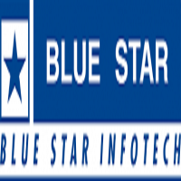 Blue Star Placement Papers
