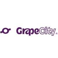Grapecity Placement Papers