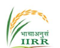 IIRR Jobs
