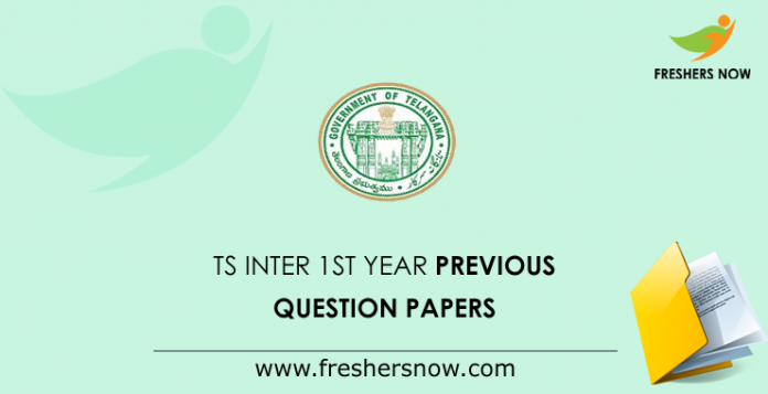 TS Inter 1st Year Previous Question Papers