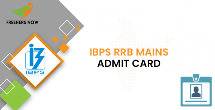 IBPS RRB Officer Mains Admit Card